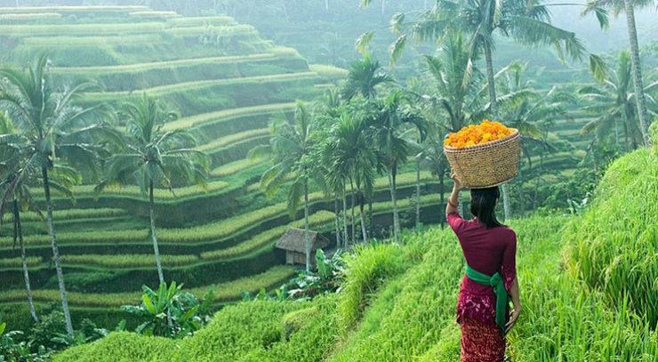 インドネシア 国内旅行 ツアー 一覧